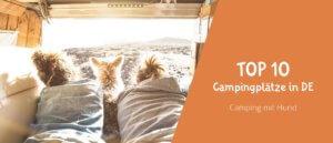 Campen mit Hund - Die Top 10 Camping Plätze in Deutschland für den Urlaub mit Hund