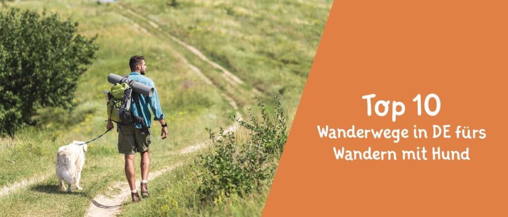 Titelbild Blogbeitrag Hunde-Wanderwege in Deutschland - Unsere Top 10 Wanderwege in Deutschland für das Wandern mit Hund