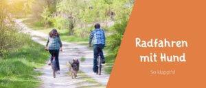 Titelbild Blogbeitrag Fahrrad fahren mit Hund