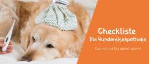 Blogbeitragsbild Die Hundereiseapotheke - unsere Checkliste