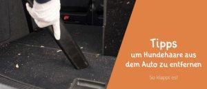 Blogbeitragsbild für Artikel Tipps um Hundehaare im Auto zu entfernen