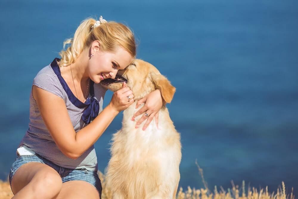 Bindung zum Hund