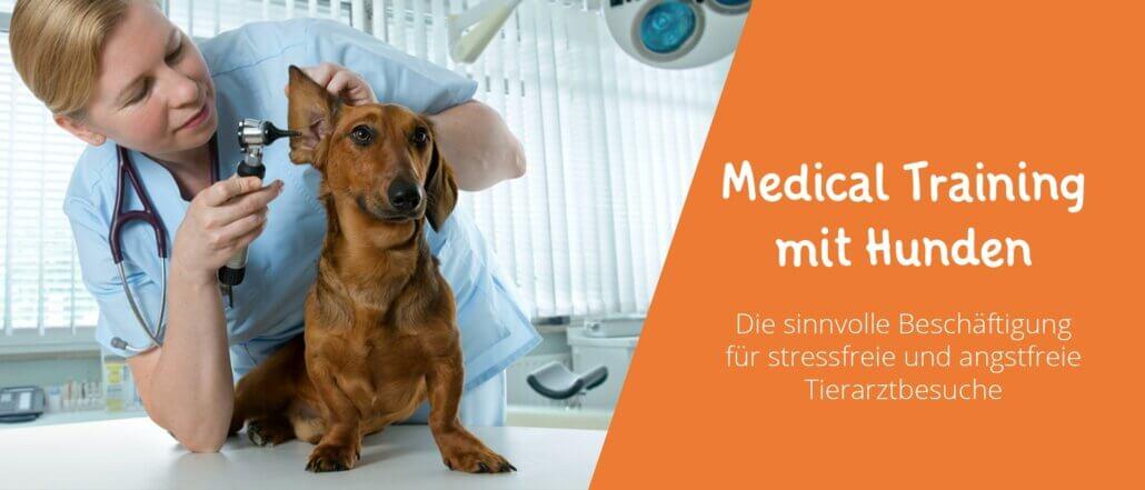 Medical Training mit Hunden